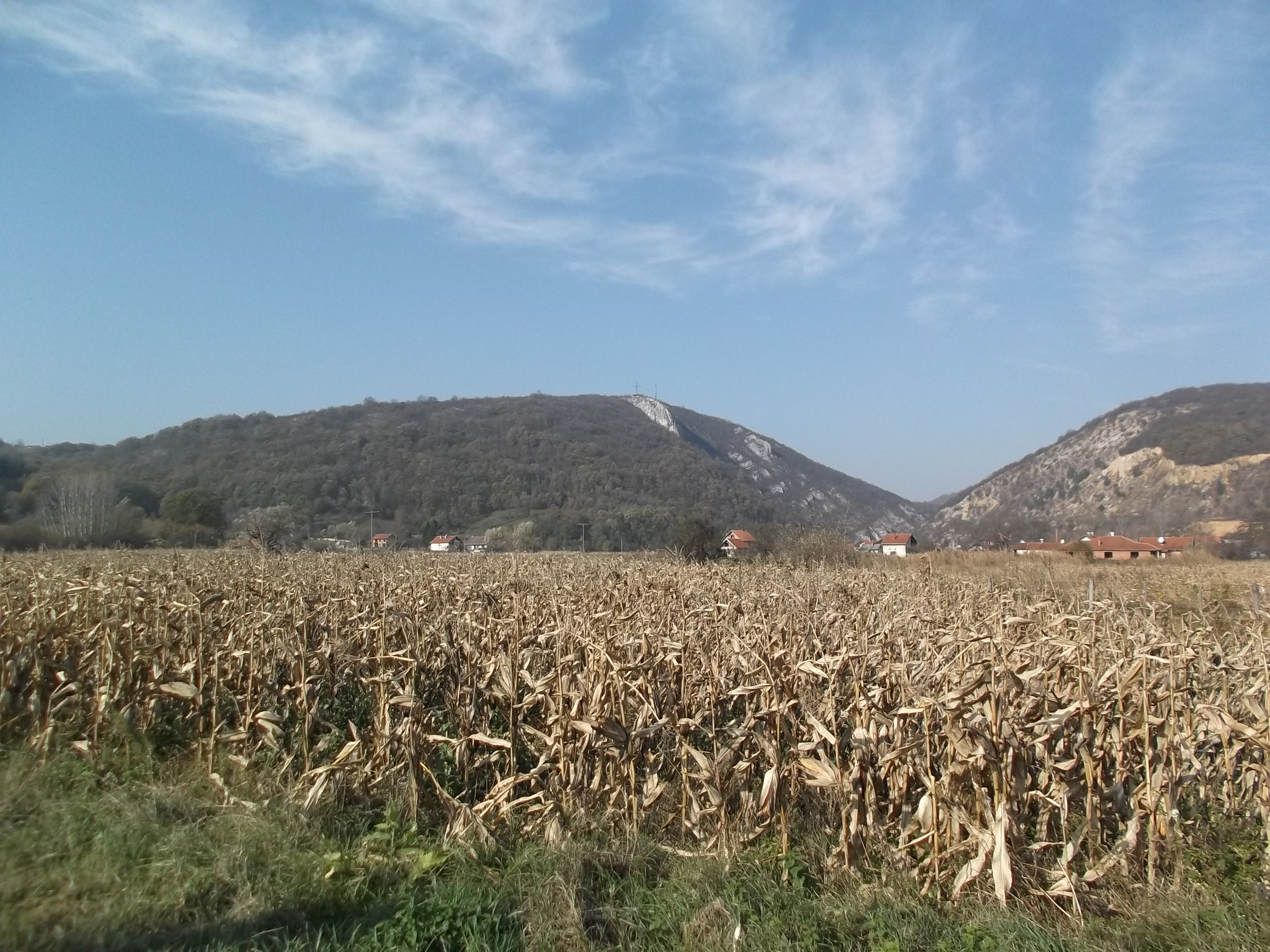 Расписано 8 конкурса за субвенције различитих грана пољопривреде