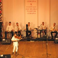 Виртоуз из Дубоке , најбољи на 9. Фестивалу влашке музике у Неготину!