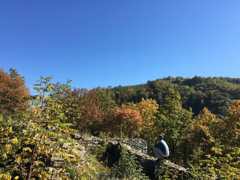 Прогностичари : јесен сува и топла, у октобру право Михољско лето