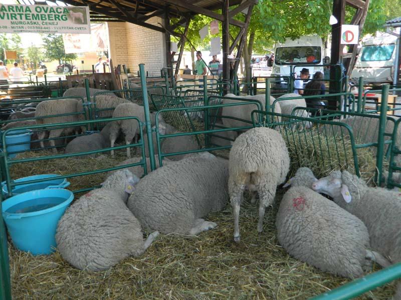 Презентација за пољопривреднике