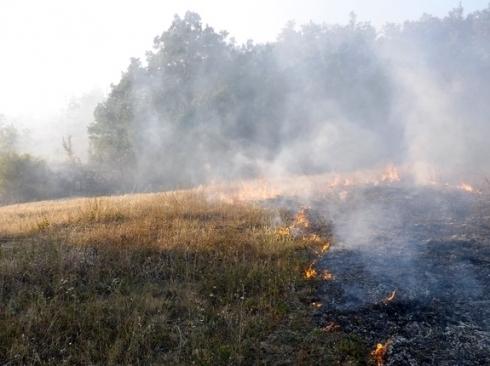 Sve više požara zbog paljenja strnjike