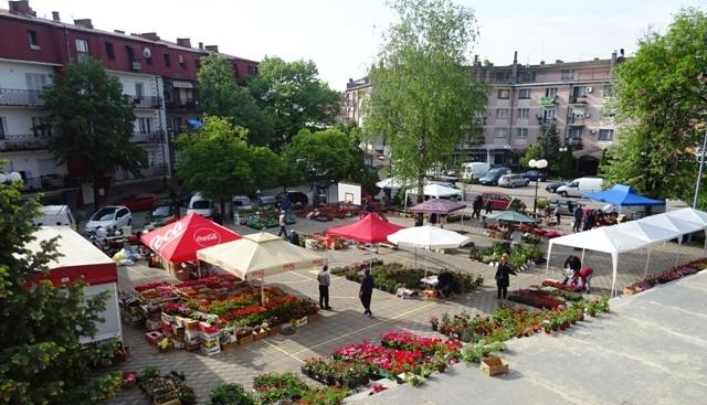 Празник цвећа на главном градском тргу