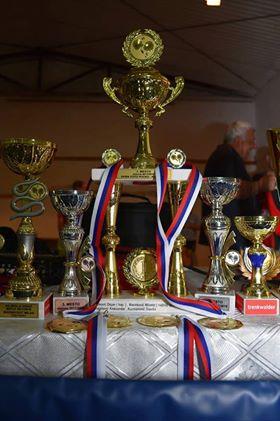 Оdržan Završni stonoteniski turnir u Mustapiću