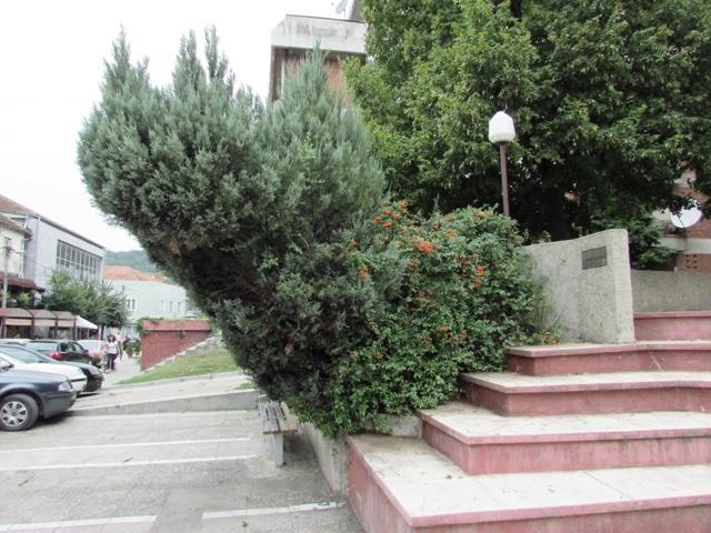 Маријоковић – уређење градског зеленила у складу са највишим стандардима